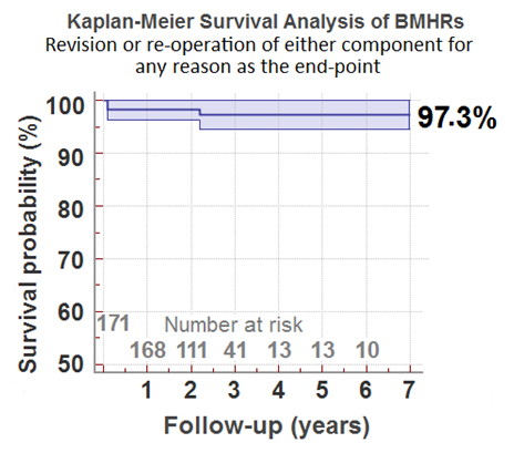 Predicted survivorship in Mr McMinn's 171 Birmingham Mid Head Resections. No patients were omitted from this cohort.